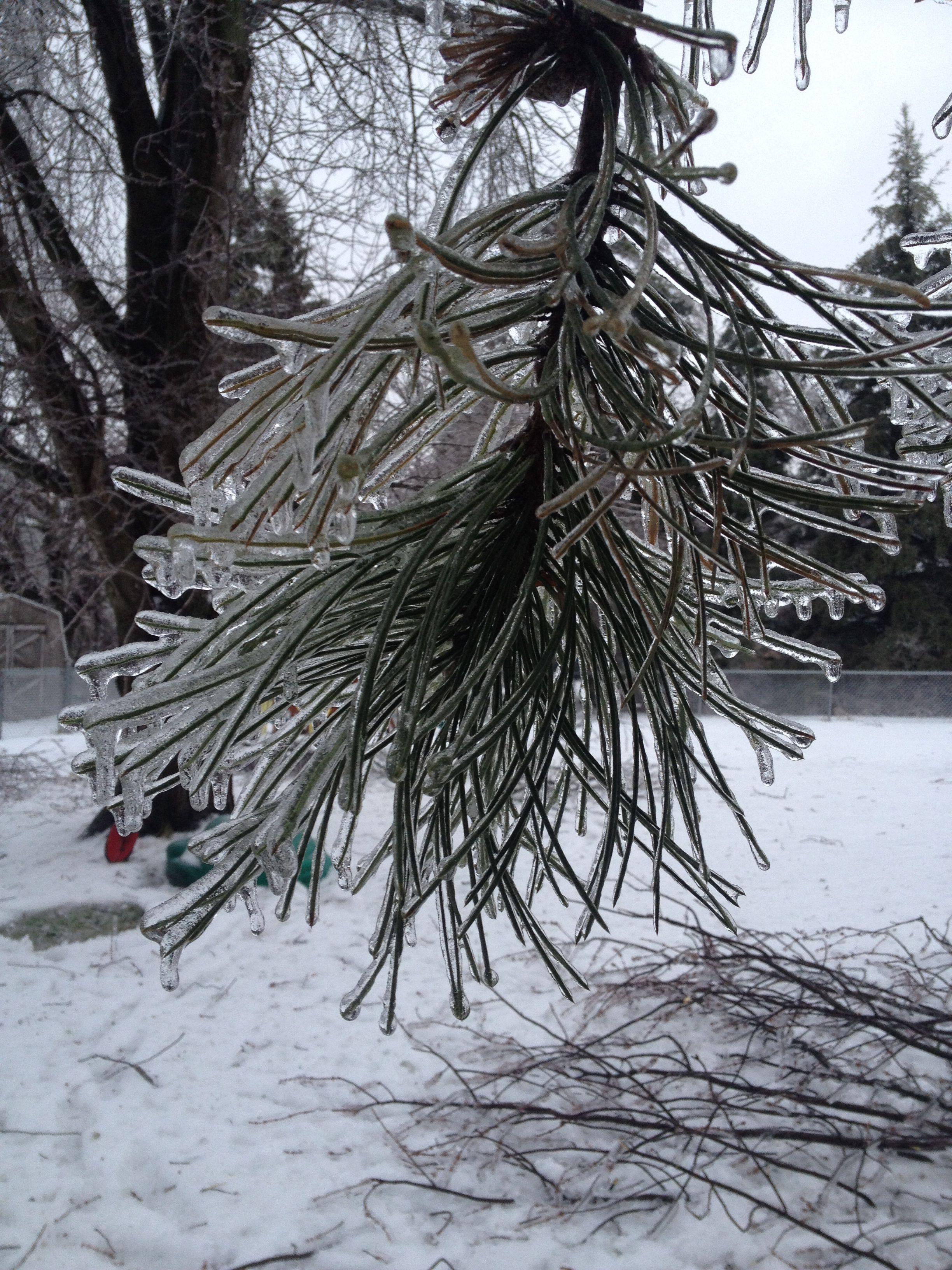 Ice storm 2013
