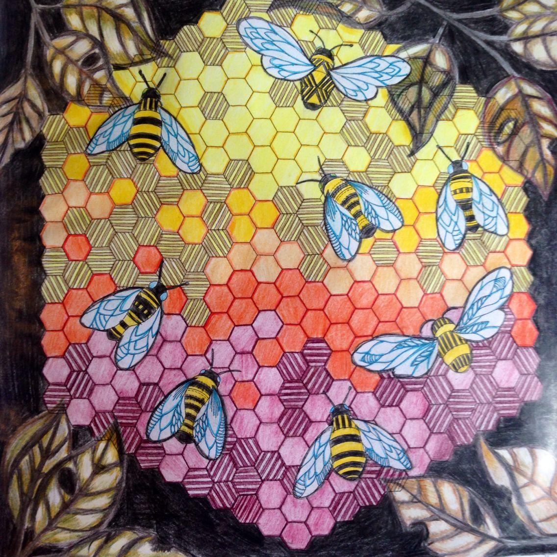 Bees Animal Kingdom Millie Marotta