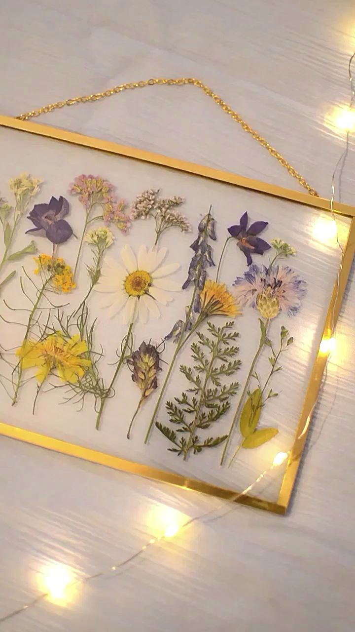 Photo of Framed pressed flowers