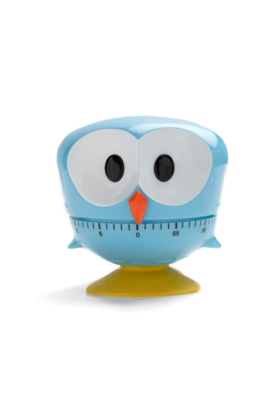 Yes, it\'s an owl kitchen timer. Clearly, I need this. | Around the ...