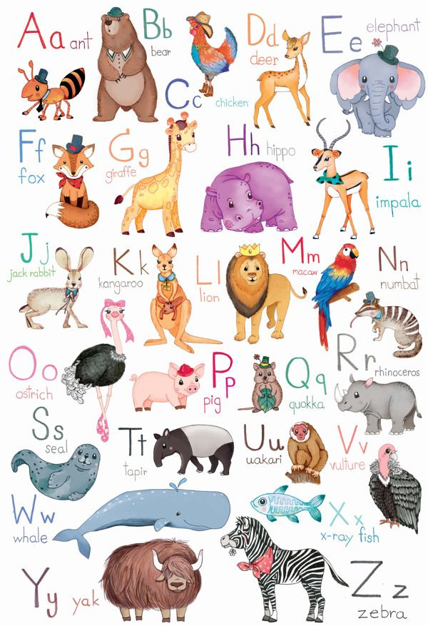 Animal AZ 2 by KT. PrAirie, via Behance Alphabet