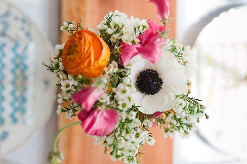 chicweddingpics:  Colorful Backyard DIY Wedding: Becca + Orion  pink and orange centerpieces  Source: http://greenweddingshoes.com/colorful-backyard-diy-wedding-becca-orion/