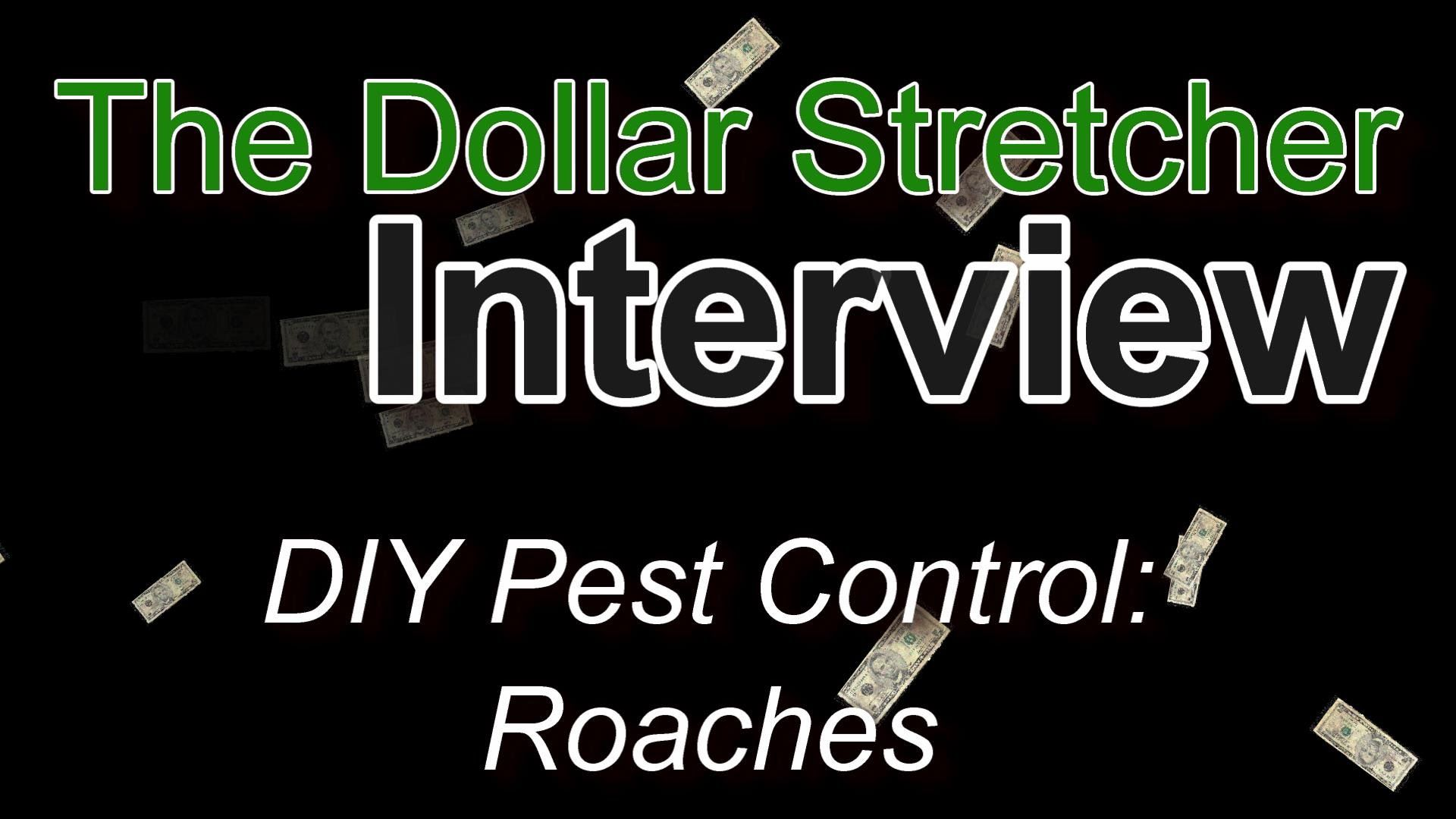 DIY Pest Control Roaches The Dollar Stretcher Diy