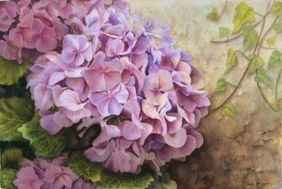 Realistic Hydrangea With Ivy Watercolor Oil Paintings Of Roses And Flowers Dvds Online Videos Free Lessons Flower Painting Loose Watercolor Flowers Watercolor Hydrangea