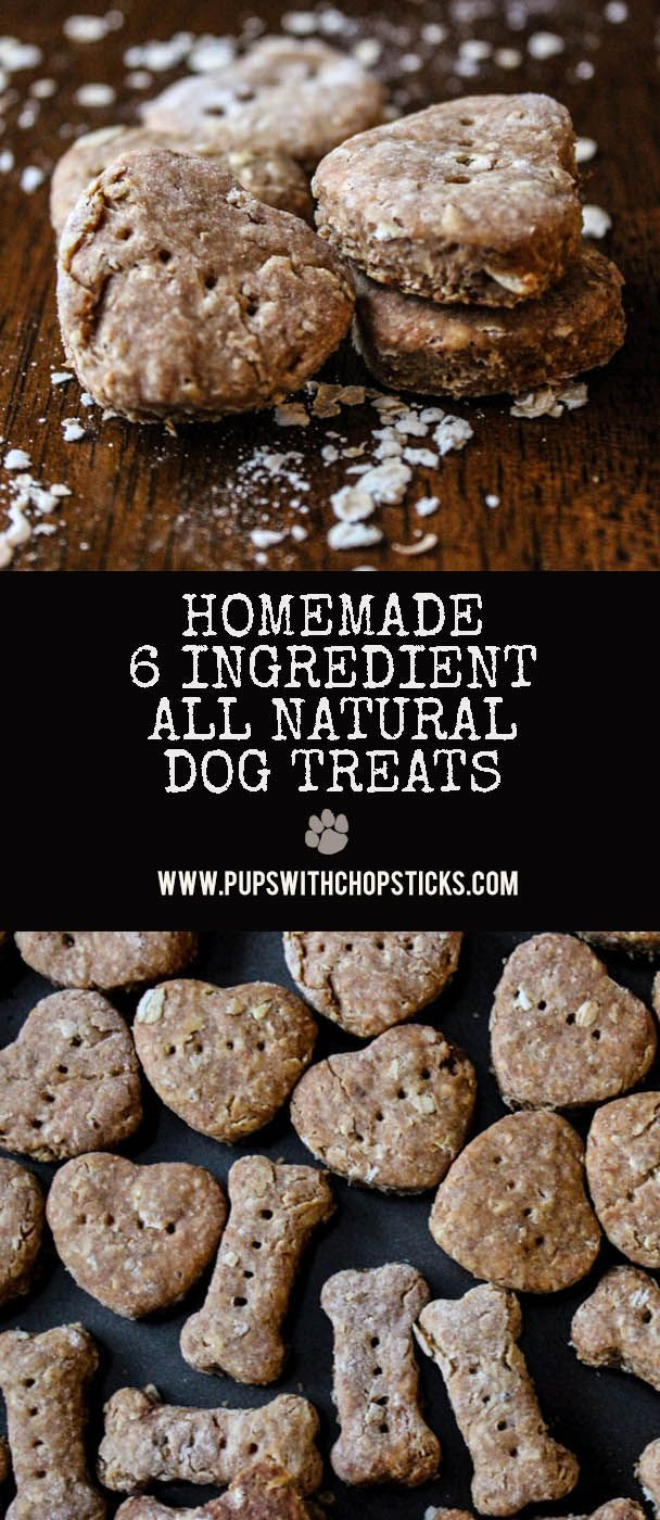 Homemade Dog Treats 6 Ingredients Recipe Dog Biscuit Recipes