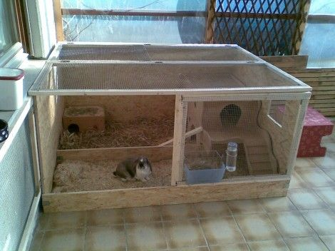 a neat indoor enclosure for rabbits k fige pinterest. Black Bedroom Furniture Sets. Home Design Ideas