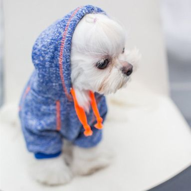 Pet Hoodie Dog Clothes Patterns Dog Sweaters Cute Dog Clothes