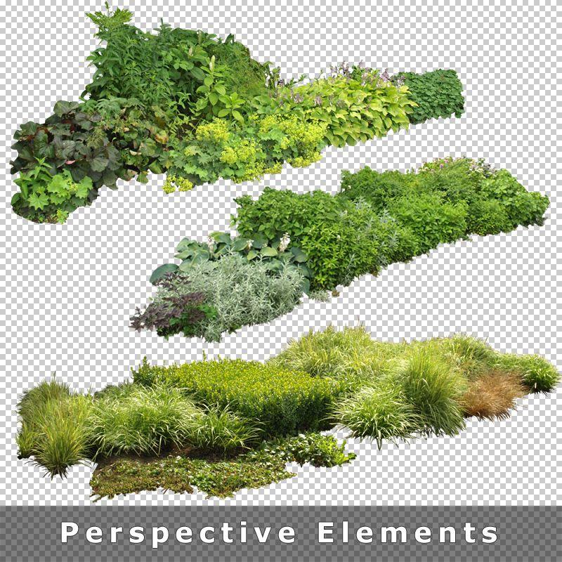 7 Garden Images Entourage 800 800