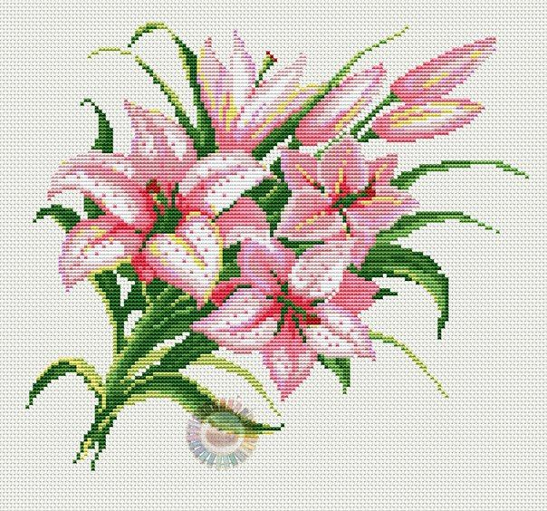 Flores Lirios Punto Cruz Deshilados Pinterest Cross Stitch