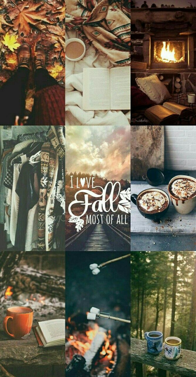 Collage Aesthetic Autumn Cosiness Clother Drinks Book Home Nature Forest Fall Wallpaper Autumn Photography Photography Collage