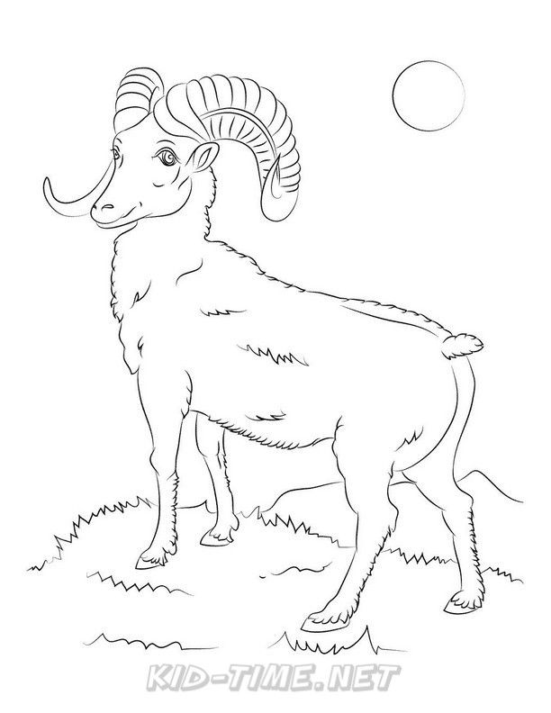 Pin By Designed Lovingly On Sheep Coloring Pages Sheep