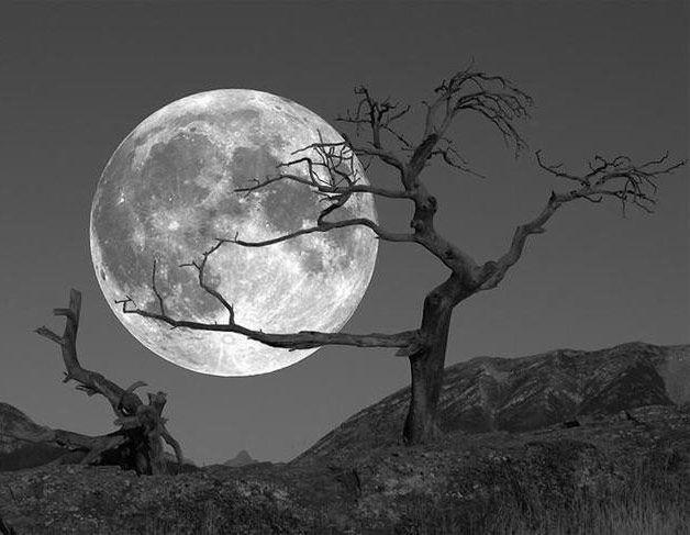 помощи тампона фото с луной прикольные стоит поставить двигатель