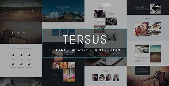 Картинки по запросу Tersus Muse Template