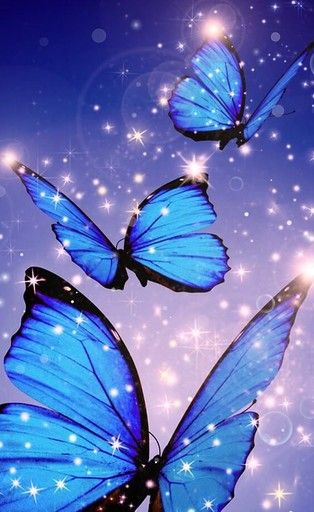 Android Butterfly Wallpaper Butterfly Wallpaper Iphone Landscape Wallpaper Butterfly wallpaper hd 3d