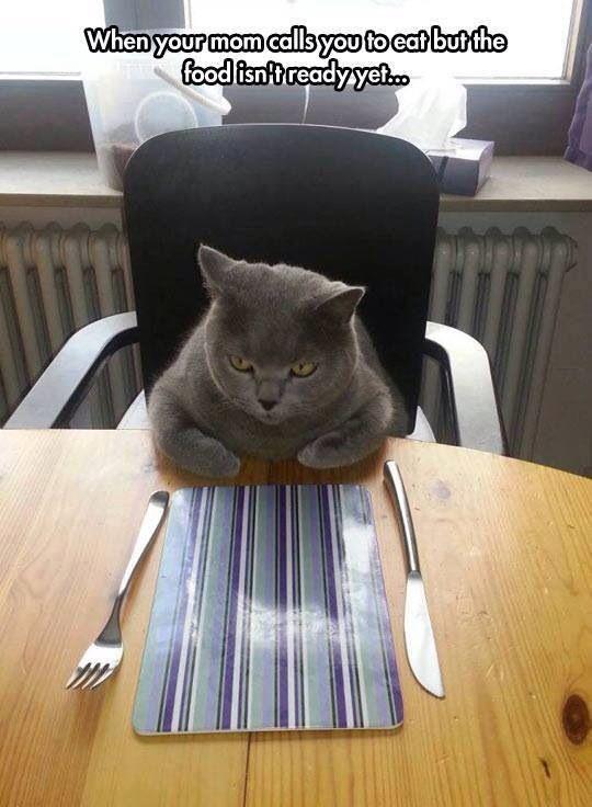 I'm hungryyyyy!!!