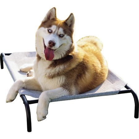Offer your four-legged friend a cool spot to rest with this elevated bed, perfect for the porch or kitchen.Product: Pet bed ...