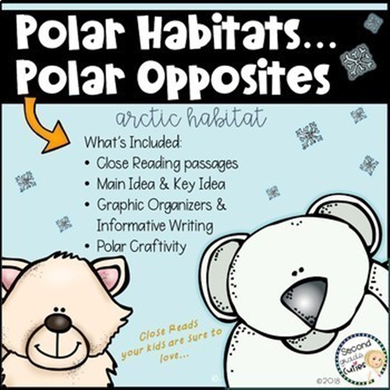Polar Bears Live At The North Pole An Arctic Habitat Informational Reading Polar Bears Live Close Reading Passages [ 3000 x 3000 Pixel ]