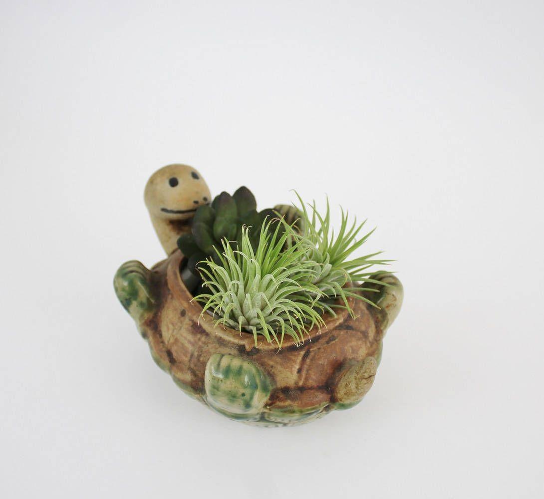 Vintage Pottery Turtle Planter Ceramic Garden Flower Pot By Suite22 On Etsy