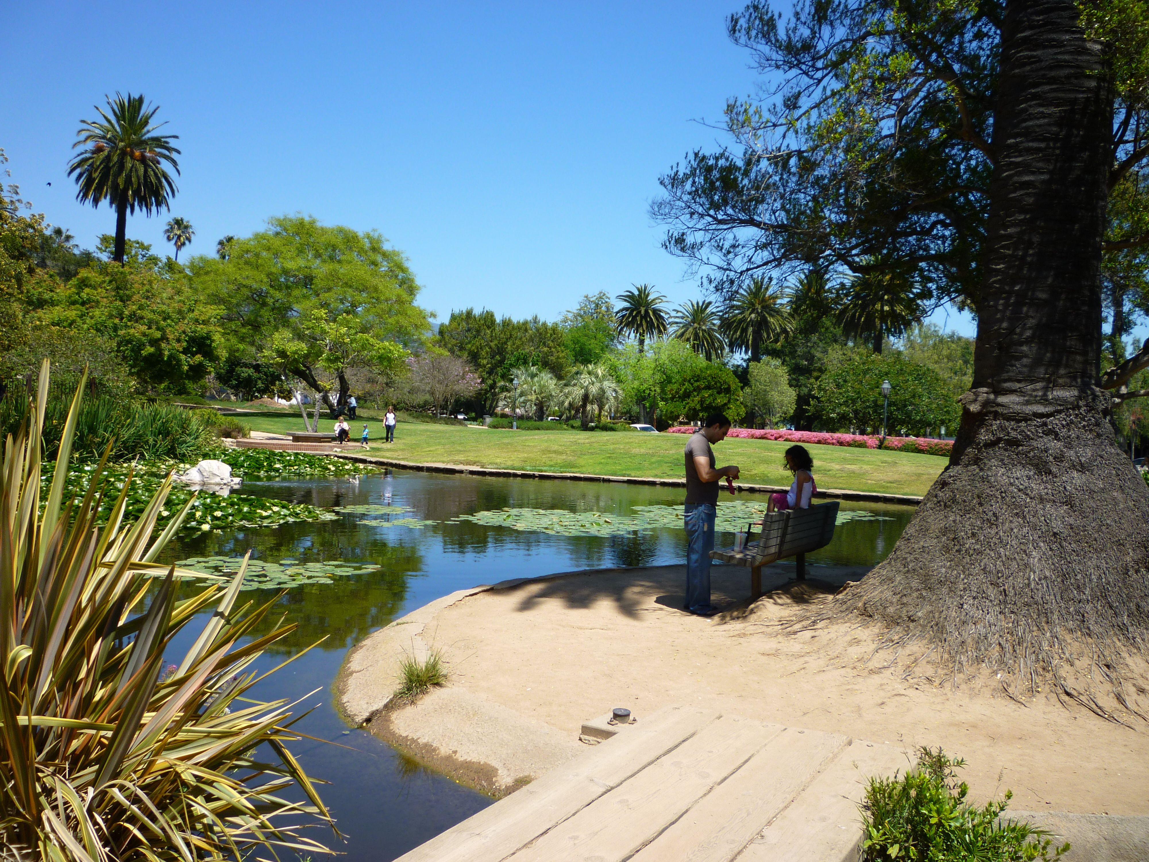Alice Keck Park Gardens with Koi, Turtles, and Ducks is a fantastic place to picnic and explore.