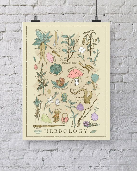 Harry Potter Herbology Print / Poster 12 x by WellSaidCreations