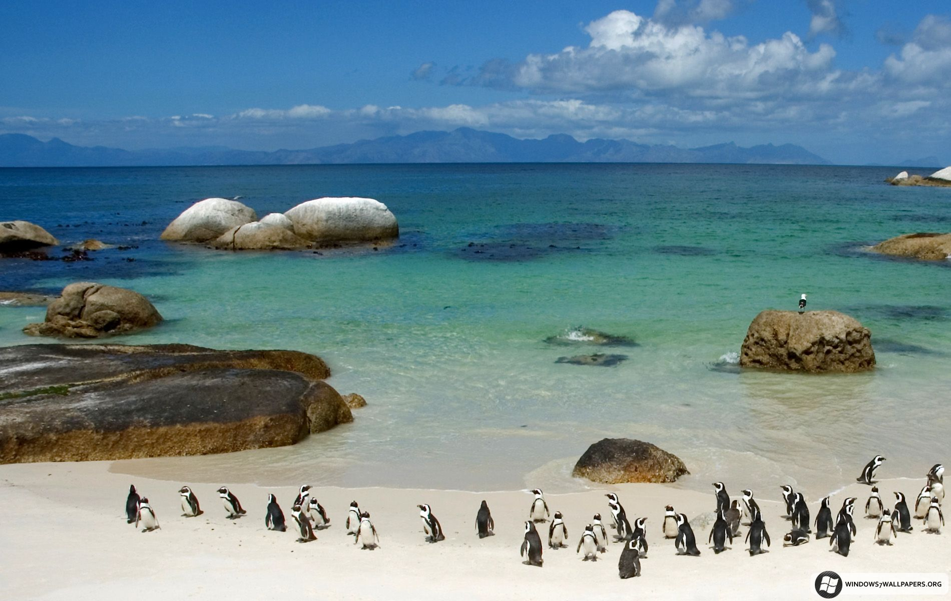 Bing wallpaper archive south africa travel south africa
