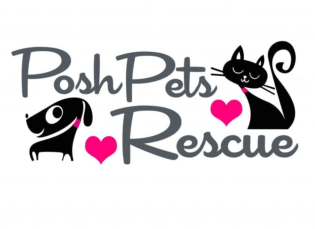 Bbs Rescue Spotlight Posh Pets Best Bully Sticks Banho E Tosa