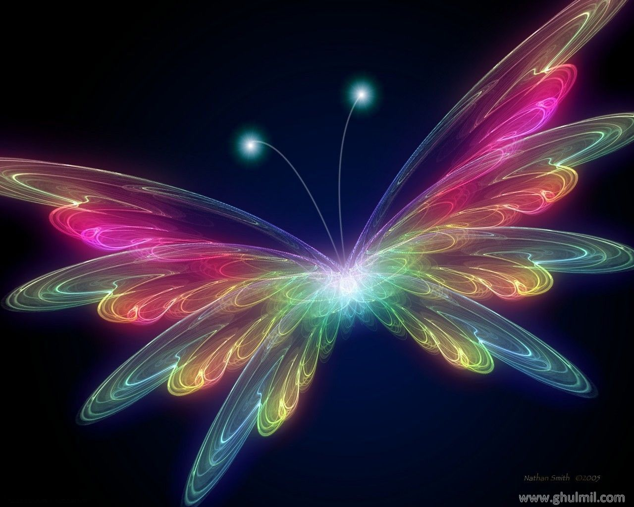 Colorful Desktop Backgrounds Colorful butterfly