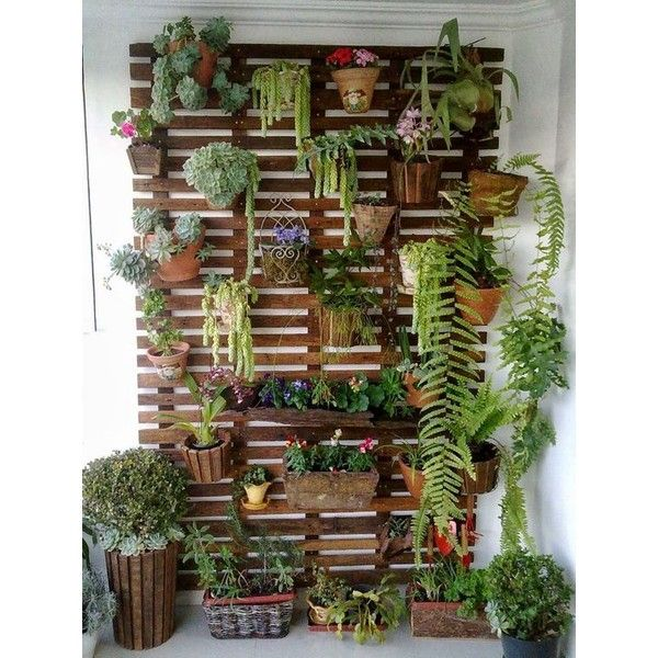 Charming Pallet Wall Planters Liked On Polyvore Featuring Home Outdoors Outdoor Decor Patio Mounted Wooden