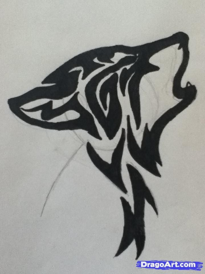 How To Draw A Howling Tribal Wolf Step 4 Wolf Face Drawing Wolf Drawing Wolf Face