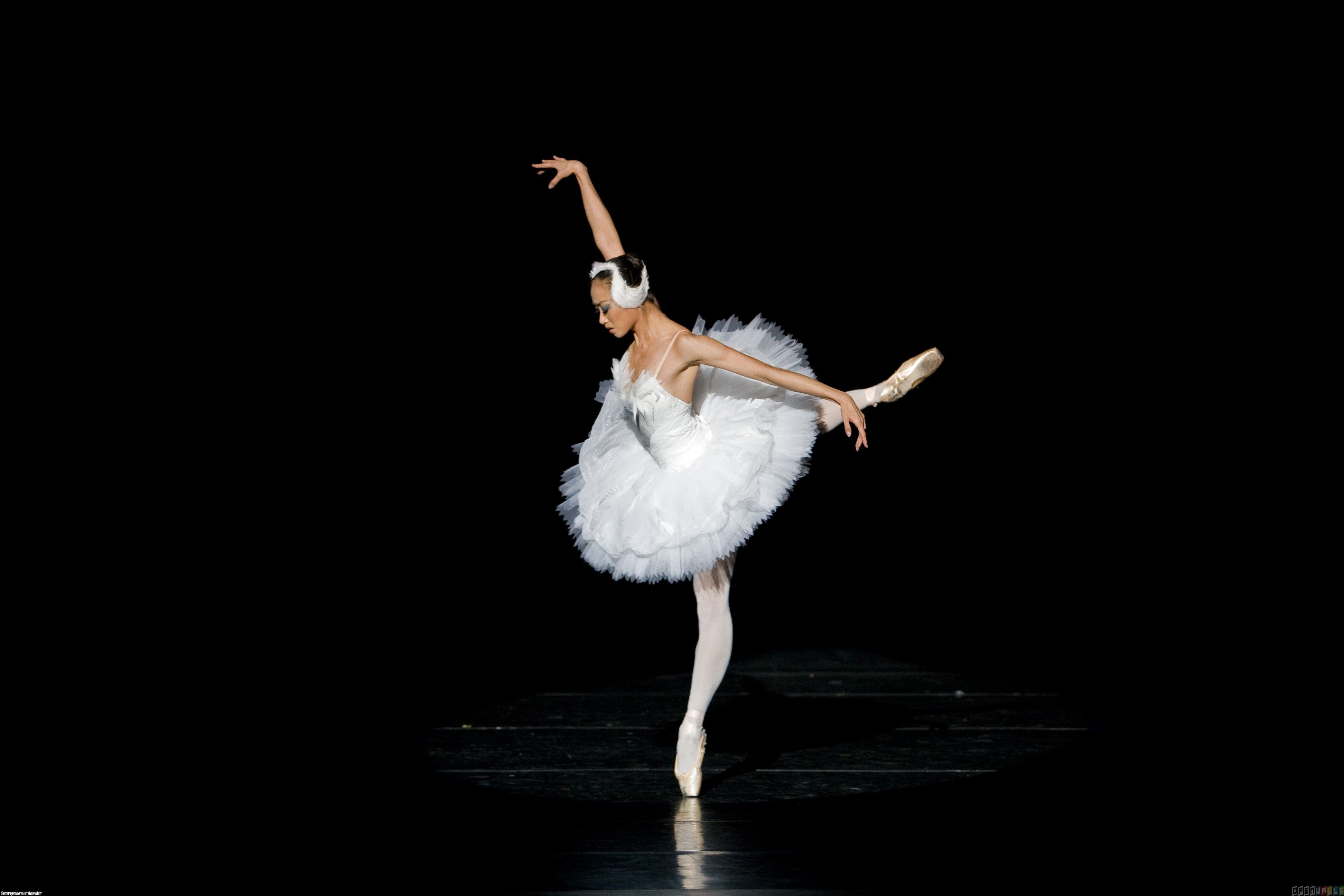 Ballerina Photo Wallpapers Pictures With Ballerina Stranica 6 Ballet Wallpaper Ballerina Wallpaper Ballerina Images