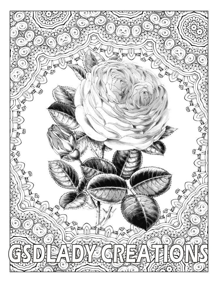 Blooming Rose Flower Art Greyscale