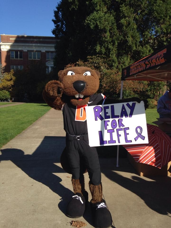 Relay for Life: Stand up Against Cancer May 15, 6:00 PM-May 16, 6:00 AM MU Quad   This is Oregon State's 11th annual Relay for Life! Our theme this year is ReLEI for Life, so members have the opportunity to dress up and decorate their campsites! Join us with your club, colleges, sorority, frat, or just a group of friends!