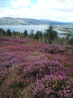 Writing And Wayfaring Pictures For St Patrick S Day Wonders Of The World Ireland Travel Irish Heritage