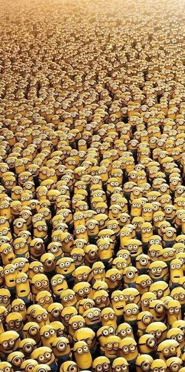 A lot of minions