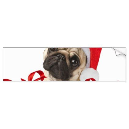 Pug gifts dog claus funny pugs funny dogs bumper sticker christmas stickers
