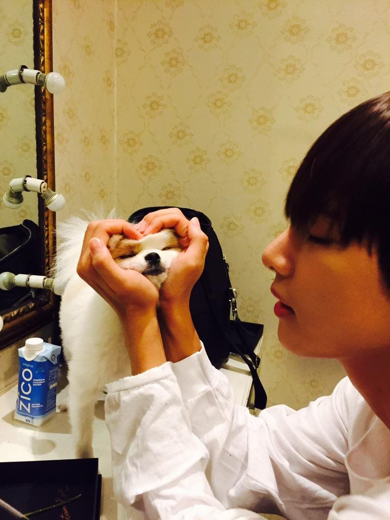 V what are you doing to the dog? I'm pretty sure that's not how you treat dogs