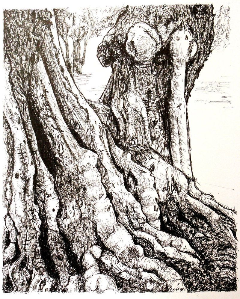 This is an image of Impertinent Tree Pen Drawing