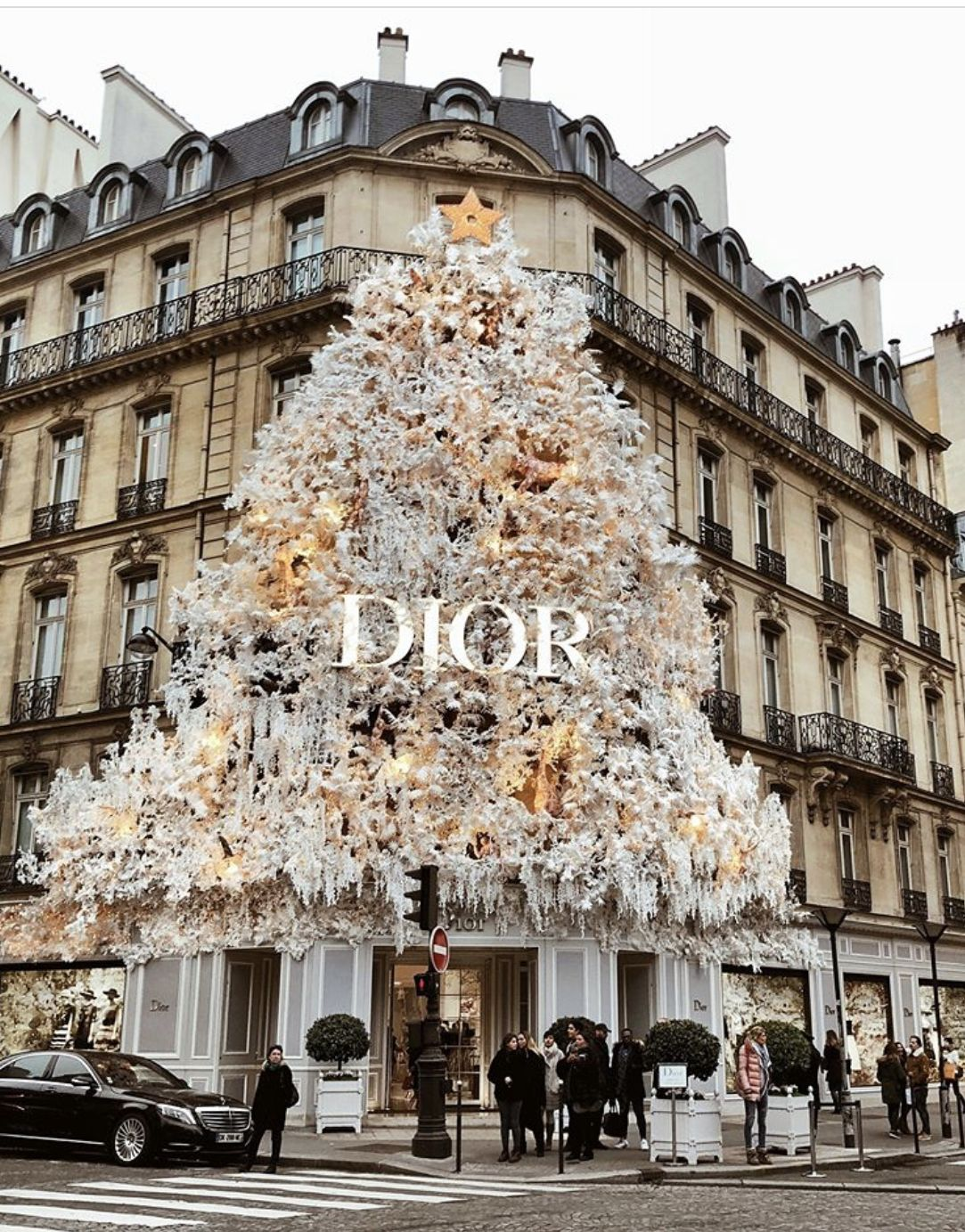 Dior Christmas Tree 2018 2019 Paris Boutique Boujee Aesthetic Luxury Store Christmas Aesthetic