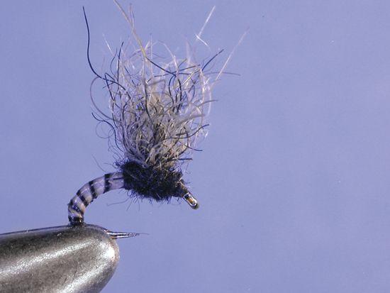 Cannon s suspender midge hook 18 24 tiemco 2488 thread for Midge fly fishing