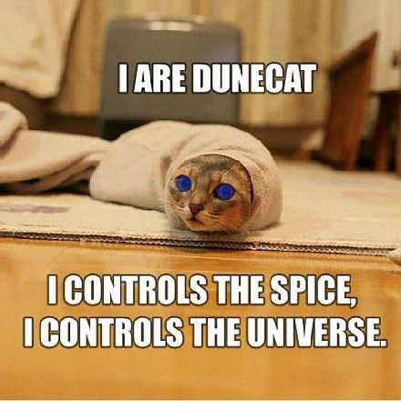 Dune lolcated