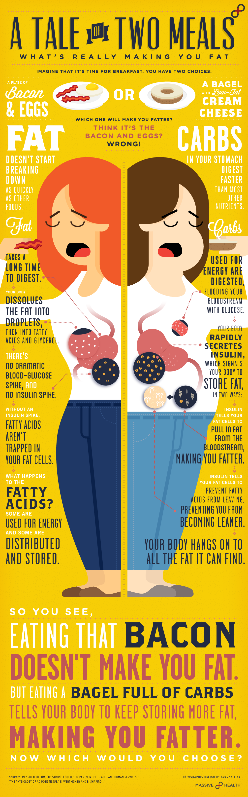 fat vs. carbs.  the truth,