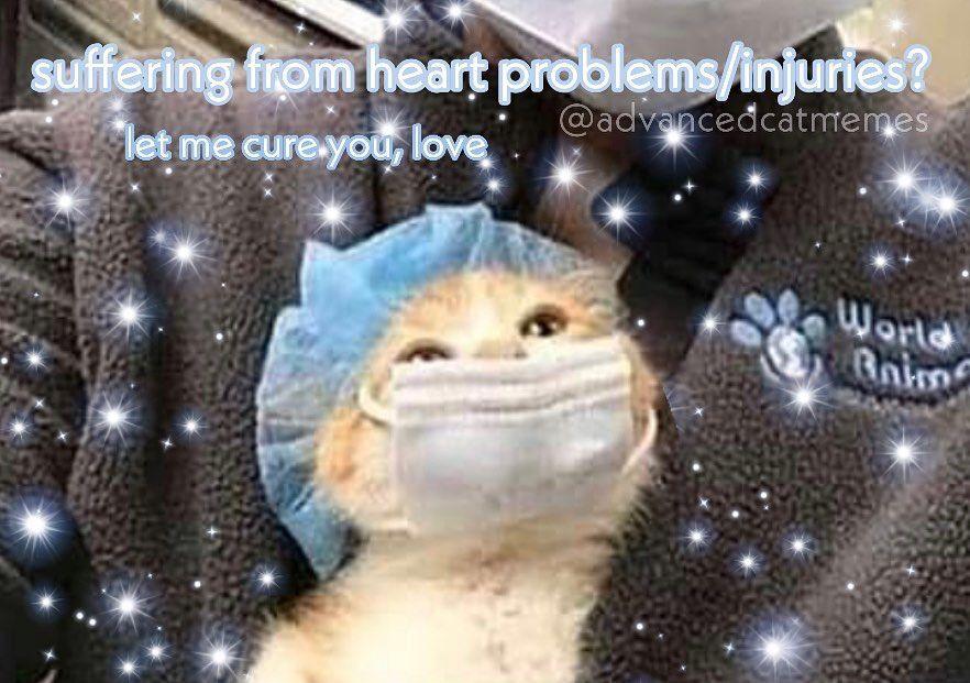 Cute Memes Cute Love Memes Love You Meme