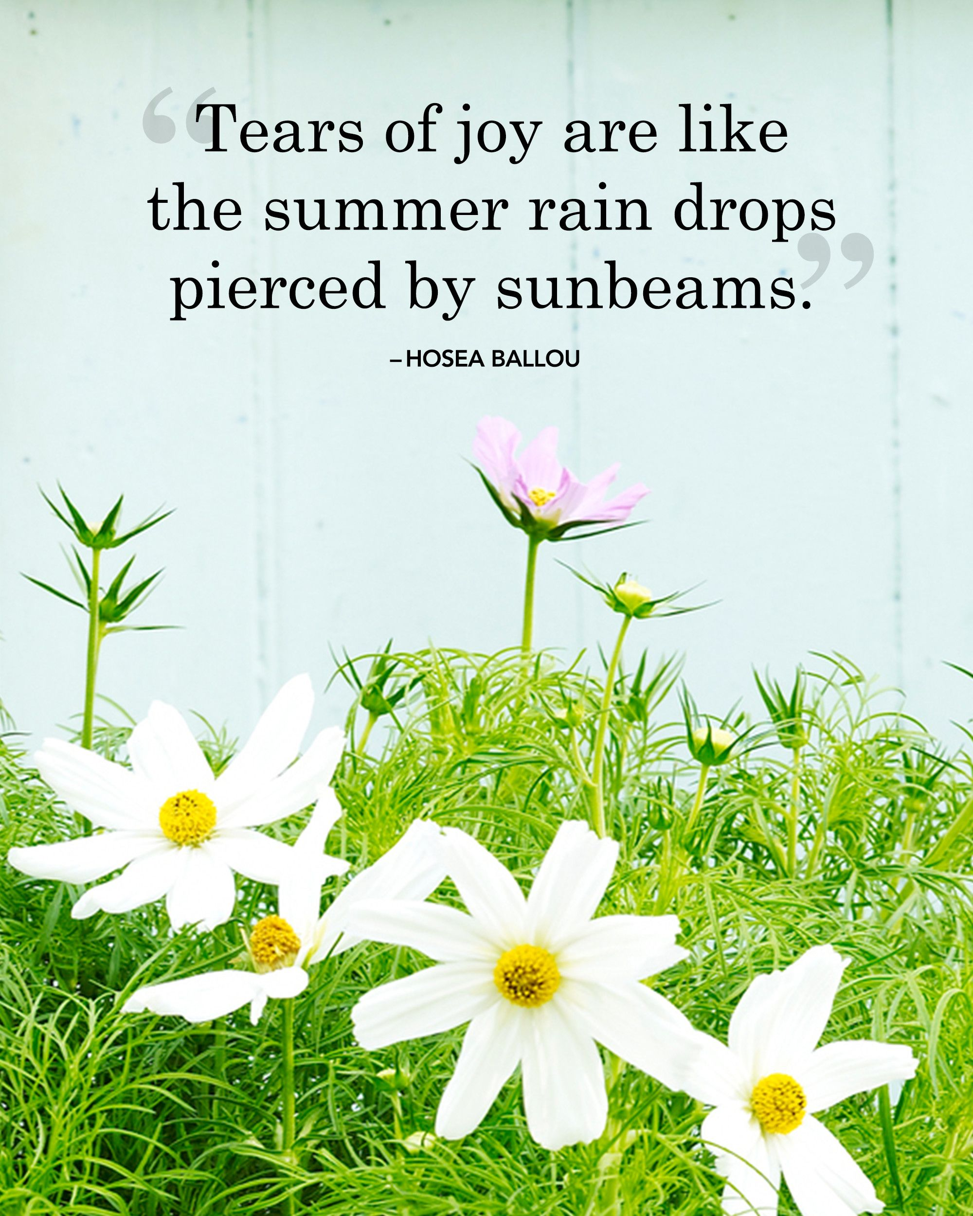 24 Absolutely Beautiful Quotes About Summer Our Favorite Quotes