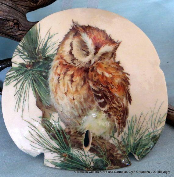 Sand Dollar OWL ORNAMENT by CarmelasCoastalCraft on Etsy, $15.00