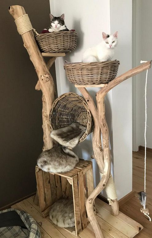 Photo of All natural cat tree handmade by Schnurrwerk (Germany)