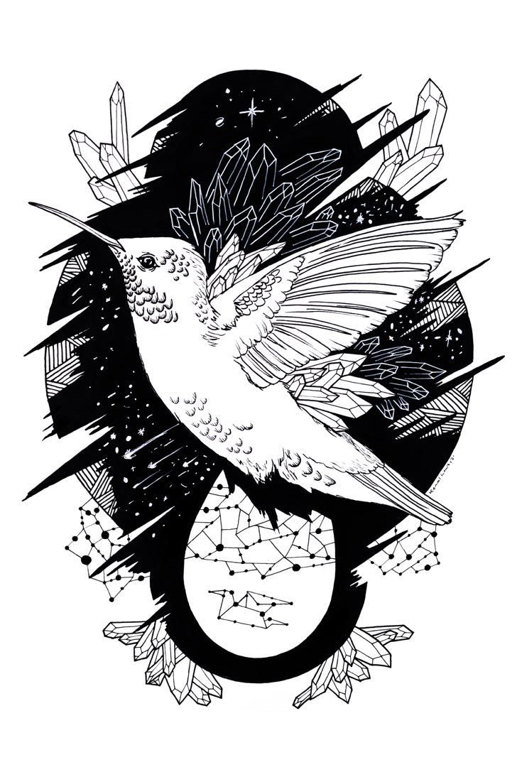 A Beautiful Collection of Hummingbird Coloring Pages | Pinterest ...