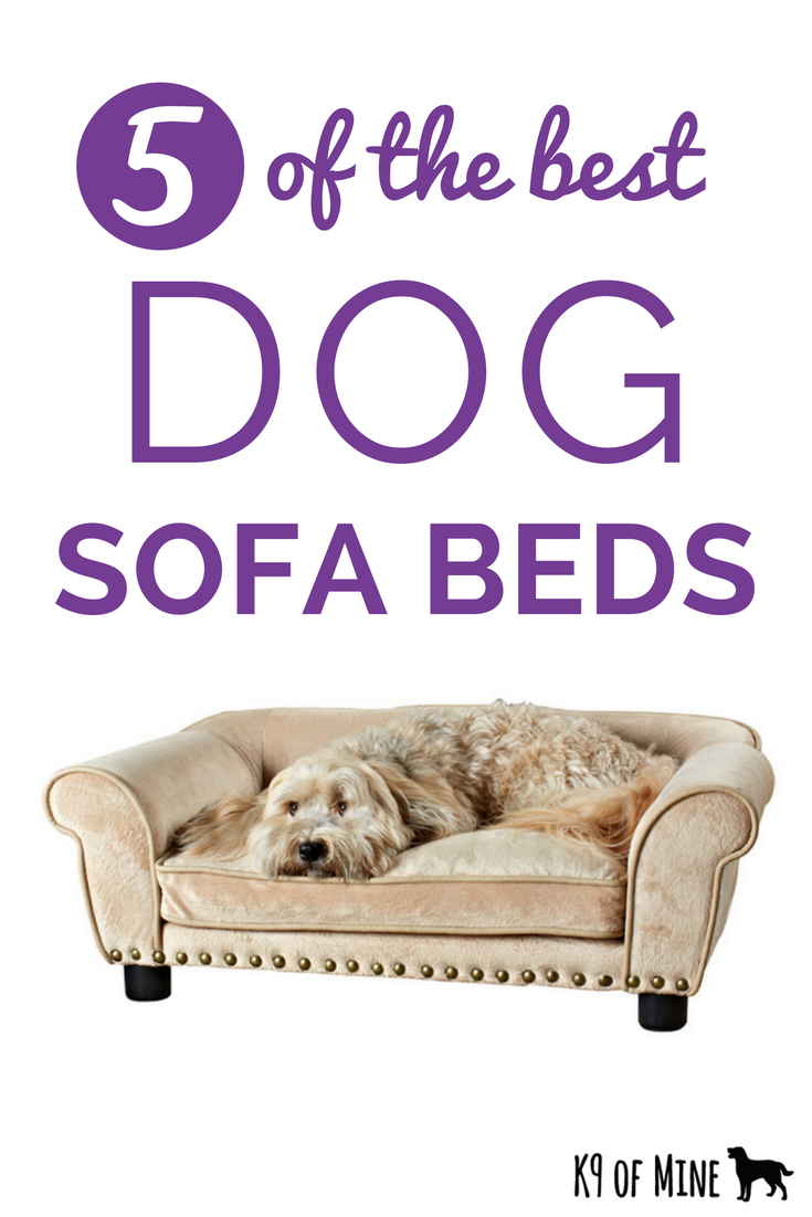 7 Best Dog Sofa Beds [2020 Reviews] Cushy Canine Couches