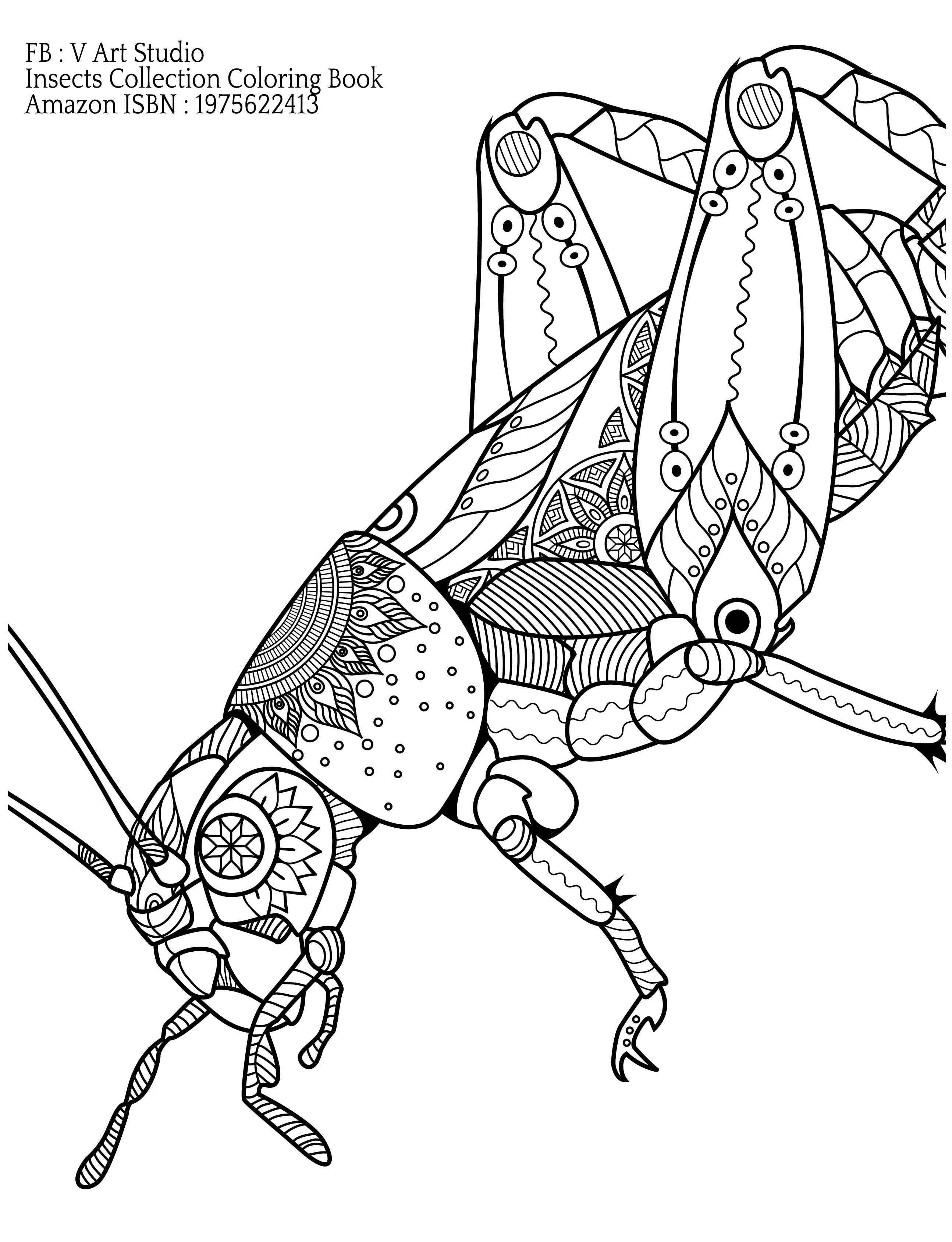 Insects Collection Coloring Books For Adults See It On Our Website K Imagine Pub Com Ausmalbilder Ausmalen Bilder