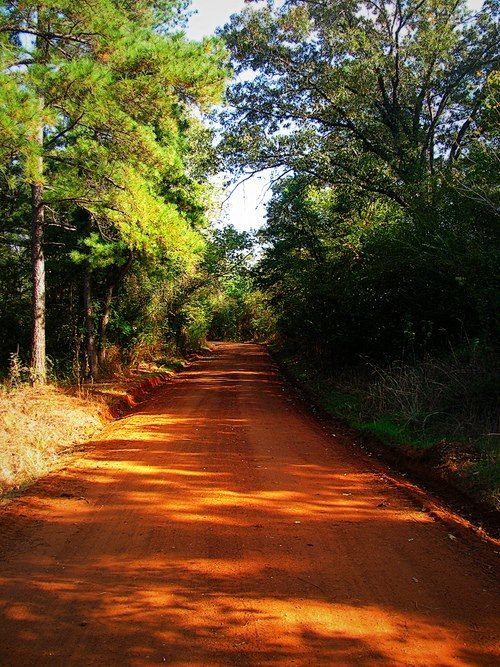 Red Dirt Road Before Us The Narrow Sun Splotched Road Wound