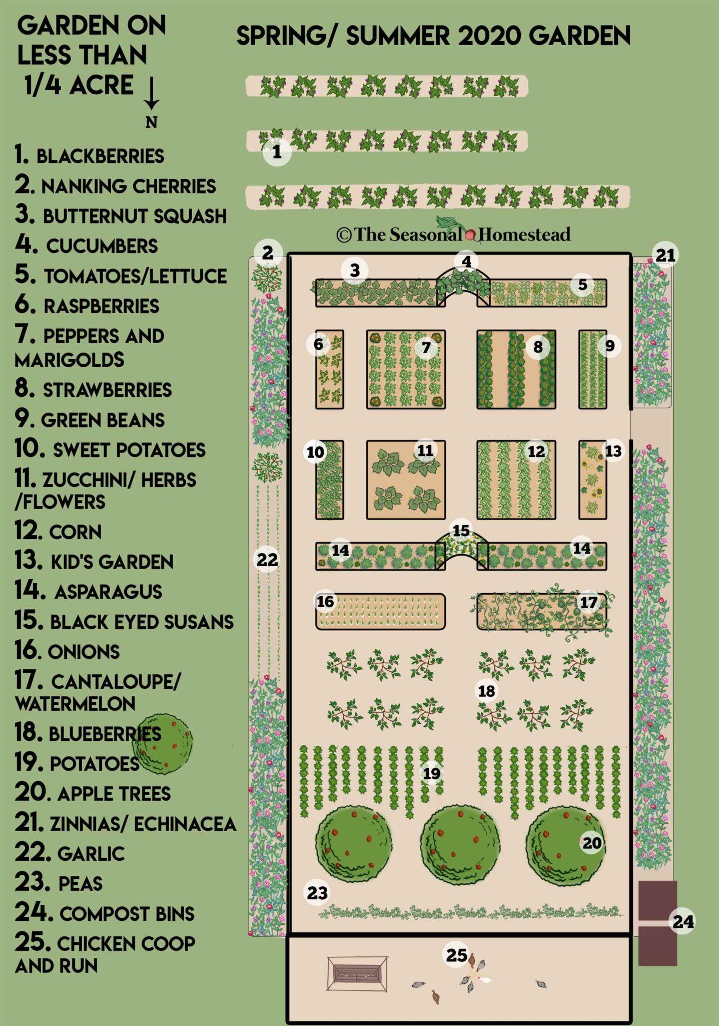Quarter Acre Garden Plans 2020 The Seasonal Homestead Garden Planning Layout Garden Layout Vegetable Vegetable Garden Design